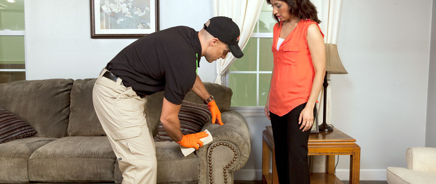 Orlando, FL carpet upholstery cleaning